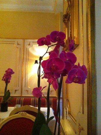 Schlosshotel Roemischer Kaiser: Lobby