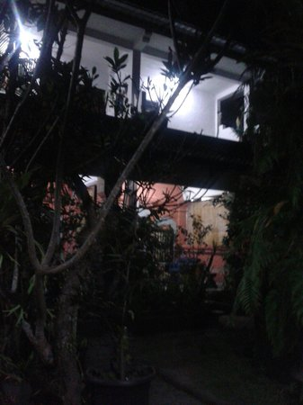 Dani Homestay: Courtyard at night