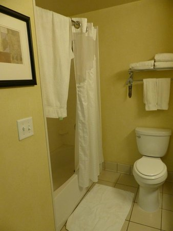 Holiday Inn Express Hotel & Suites Merced: SDB Baignoire