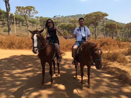 Pineland Hotel and Health Resort : horse
