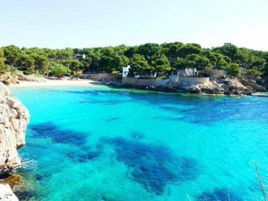 Cala Gat (Cala Ratjada, Spain): Top Tips Before You Go - TripAdvisor