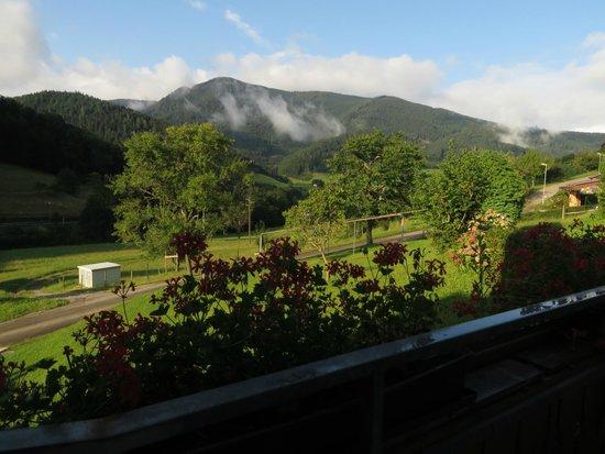 Gasthaus Ratsstuble: Uitzicht vanaf het balkon