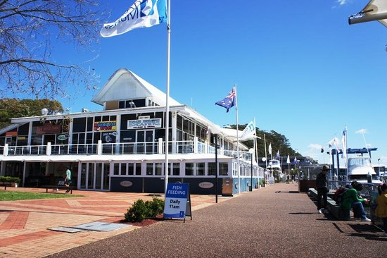 Nelson Bay Bed and Breakfast: The d'Albora Marinas Nelson Bay