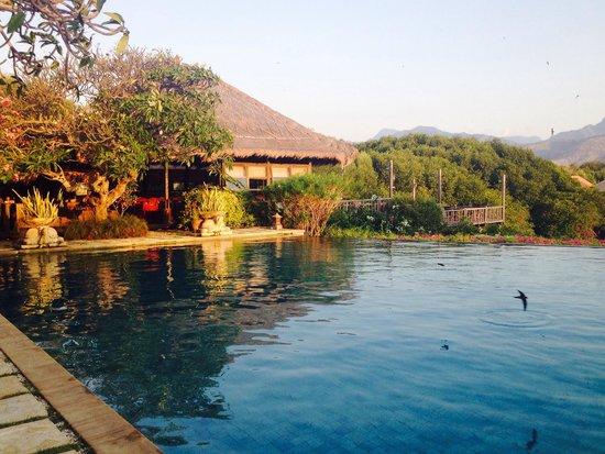 Naya Gawana Resort & Spa: The pool