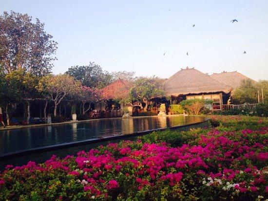 Naya Gawana Resort & Spa: The pool at sunset