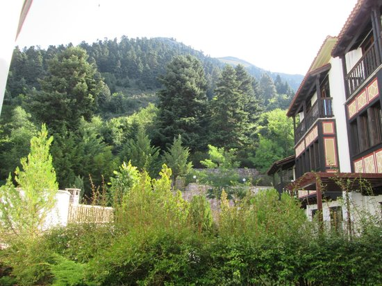 Hotel Spa Montana: Rear view of the hotel