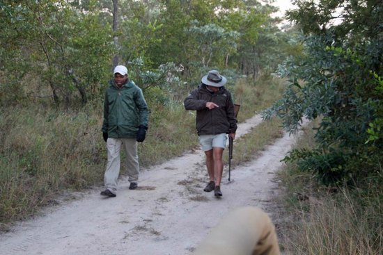 Elephant Plains Game Lodge : Searching for leopard tracks