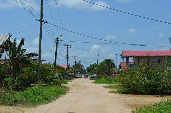 Kekemba Resort Paramaribo: Mangolaan, street where Kekemba is located