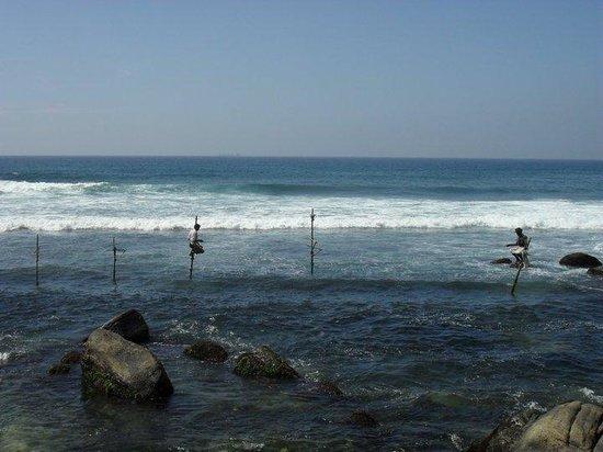 Mihiripenna Beach Resort: The stick fisherman
