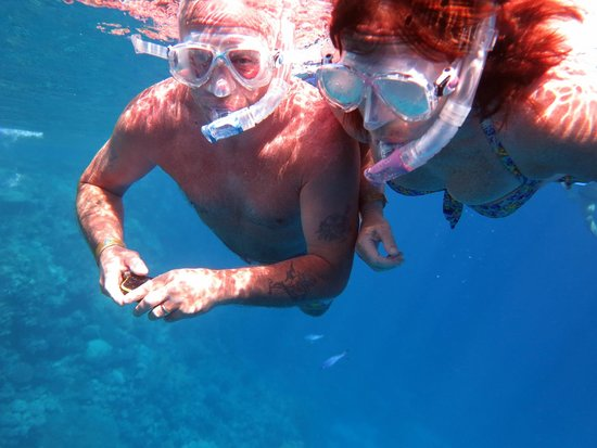 Coral Diving Club : snorkel at ras mohamed