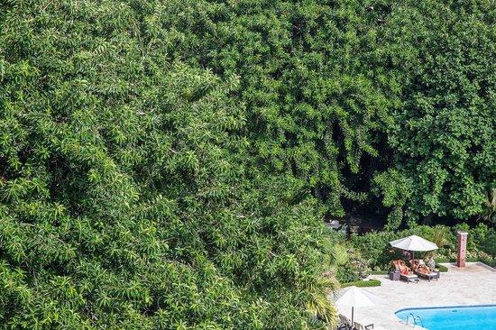 El Embajador, a Royal Hideaway Hotel: The pool side at Hotel El Embajador at Santo Domingo