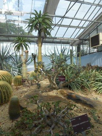 Serres du conservatoire botanique national de brest for Boulevard du jardin botanique 20