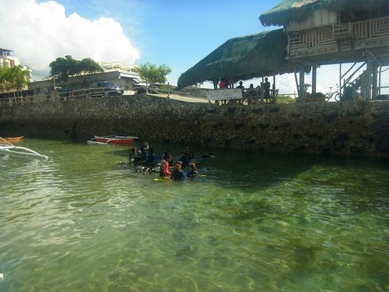 Cordova, Philippines: 体験ダイブは港で実施