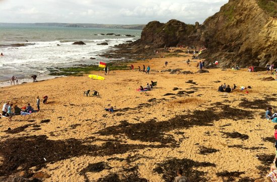 The Sun Bay Hotel : The beach at Hope cove