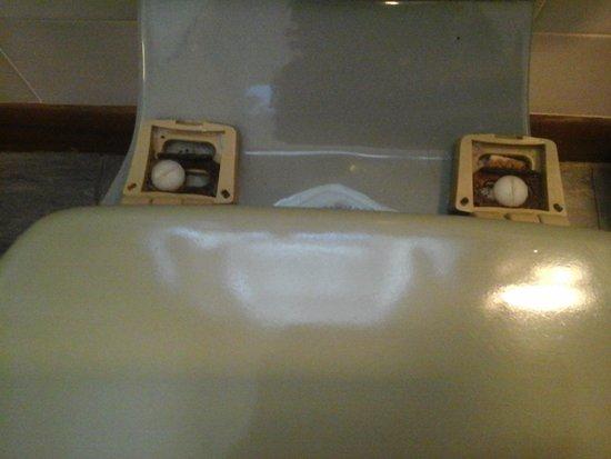 Stafford Hotel : toilet seat hinges broken