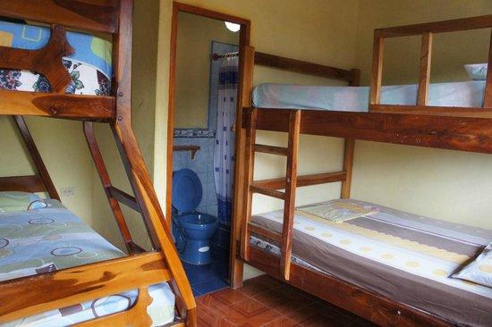 Habitaciones Diegomar