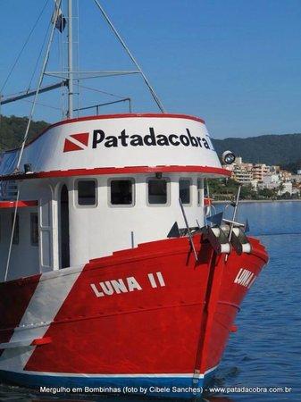 Patadacobra