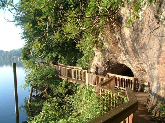 Knoxville, TN: Take a stroll along the Boardwalk trail at Ijams