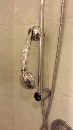 Albergo Esperia: Shabby chic showerhead