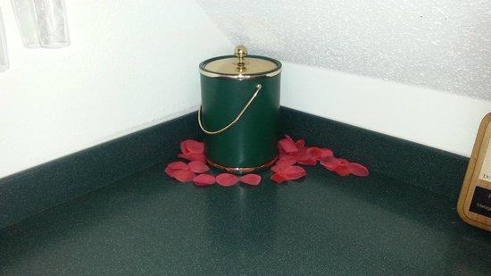 Squirrel's Nest Bed & Breakfast, LLC: Rose petals!