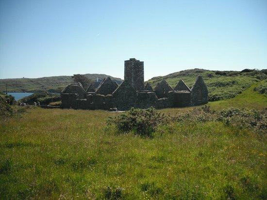 Sherkin Island: Sherkin Abbey