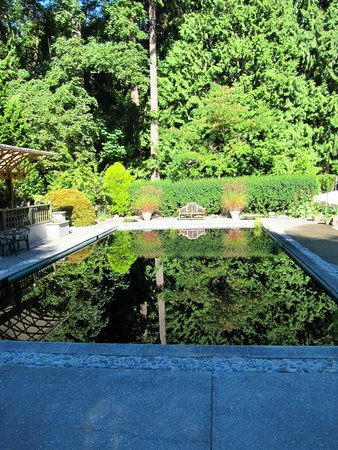 Milner Gardens & Woodland: Reflecting pool at Milner Gardens