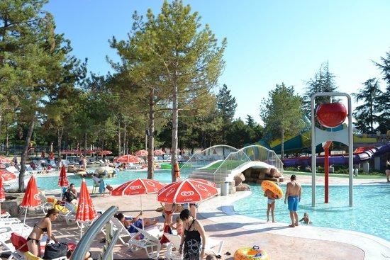 Aquapark Aquamania: вид