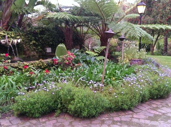 Falcons View Manor : The garden