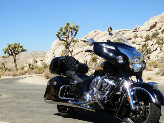 The Indian Chieftain at Joshua Tree NP - Picture of ...