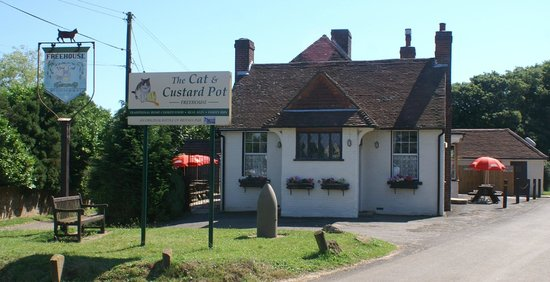 The Cat & Custard Pot