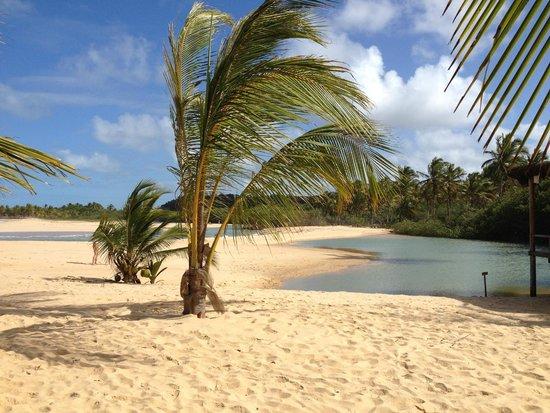 Rio da Barra Beach: beach