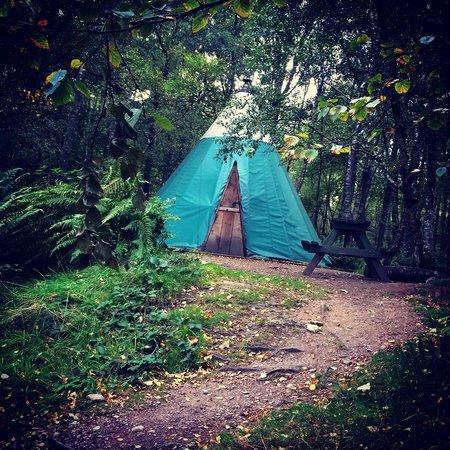 Comrie Croft Eco Hostel & Camping: Kata 2