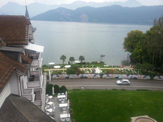 Park Weggis: View of the Lake