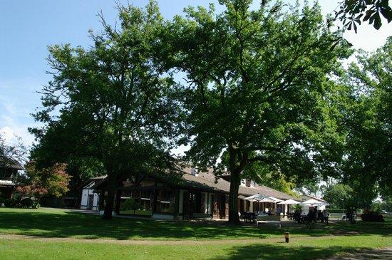Auberge des Pins : le Restaurant & la terrasse