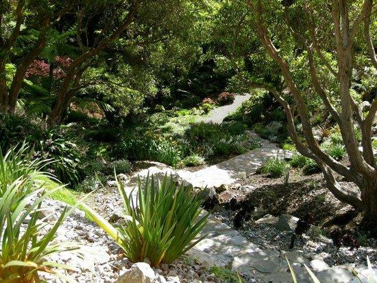 Wellington Botanic Garden: Botanical Gardens 1
