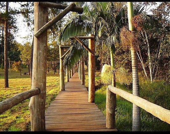 Horto Florestal Edmundo Navarro de Andrade