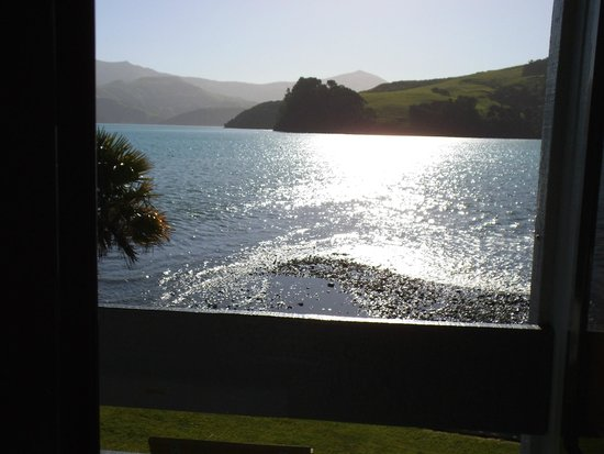 Akaroa Waterfront Motels: bay view at low tide from the balcony