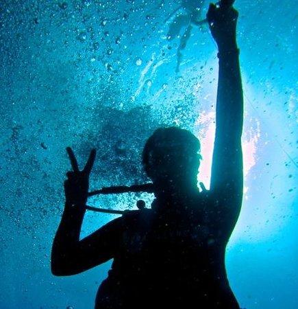 Island Divers Hawaii: Dive