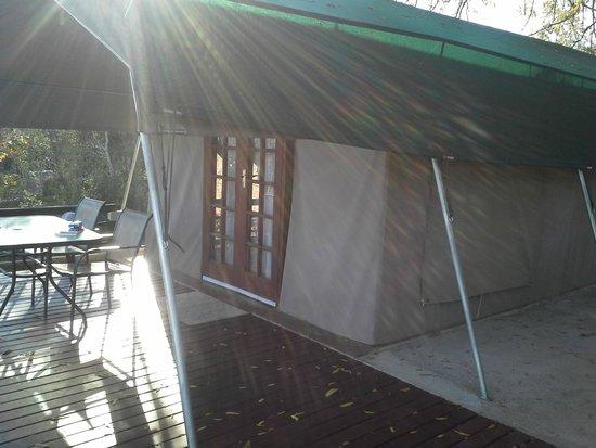 Sabie River Bush Lodge: Tenda Deluxe