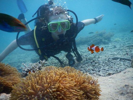 Pulau Redang, Malezya: Scuba diving