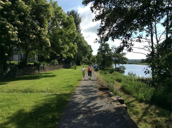 O'Brien's Bridge, Irlande : Walking path along the river