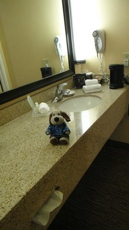 Holiday Inn Hotel & Suites Anaheim (1 BLK/Disneyland): Like the separate sink, needs a towel rack though.