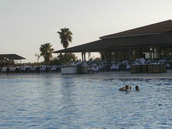 Euphoria Palm Beach Resort: Бассейн около главного ресторана