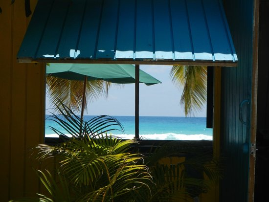 Barry's Surf Barbados Surf School : Looking through the window of Barry's Surfshop