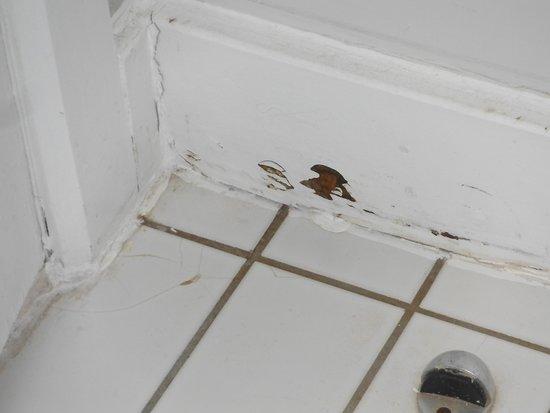 Jurys Inn Edinburgh: bathroom floor