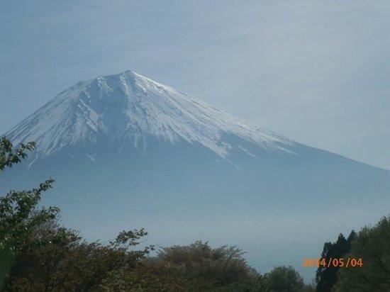 Mount Fuji: ジャパニーズスタンダード