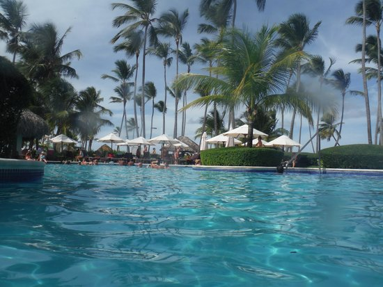 Swimming pool picture of dreams palm beach punta cana - Palm beach swimming pool ...