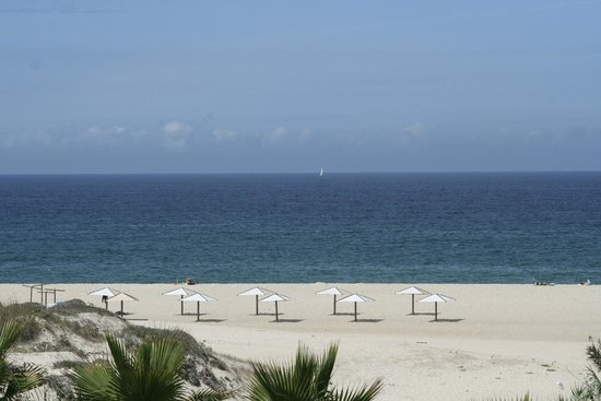 The Beachfront Apartments : Praia