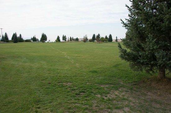Silverado Motel: Golf Course