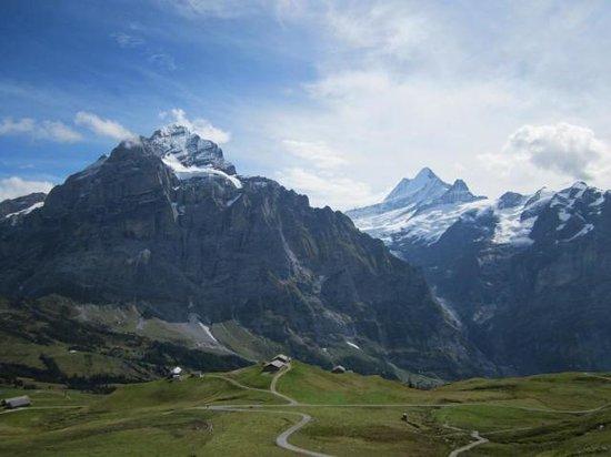 Derby Hotel: Mountains around Grindewald
